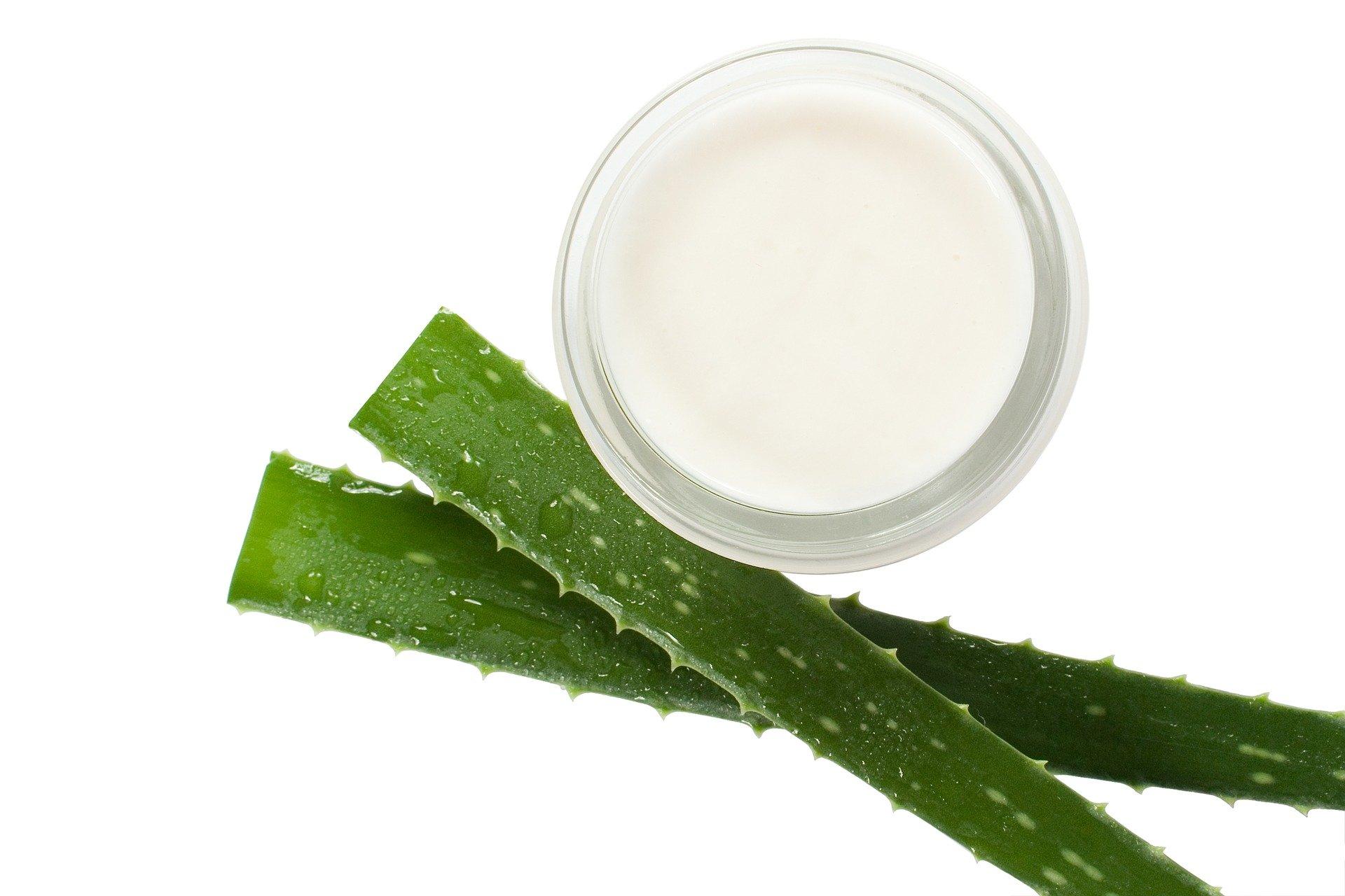 remède naturel pour lutter contre le psoriasis