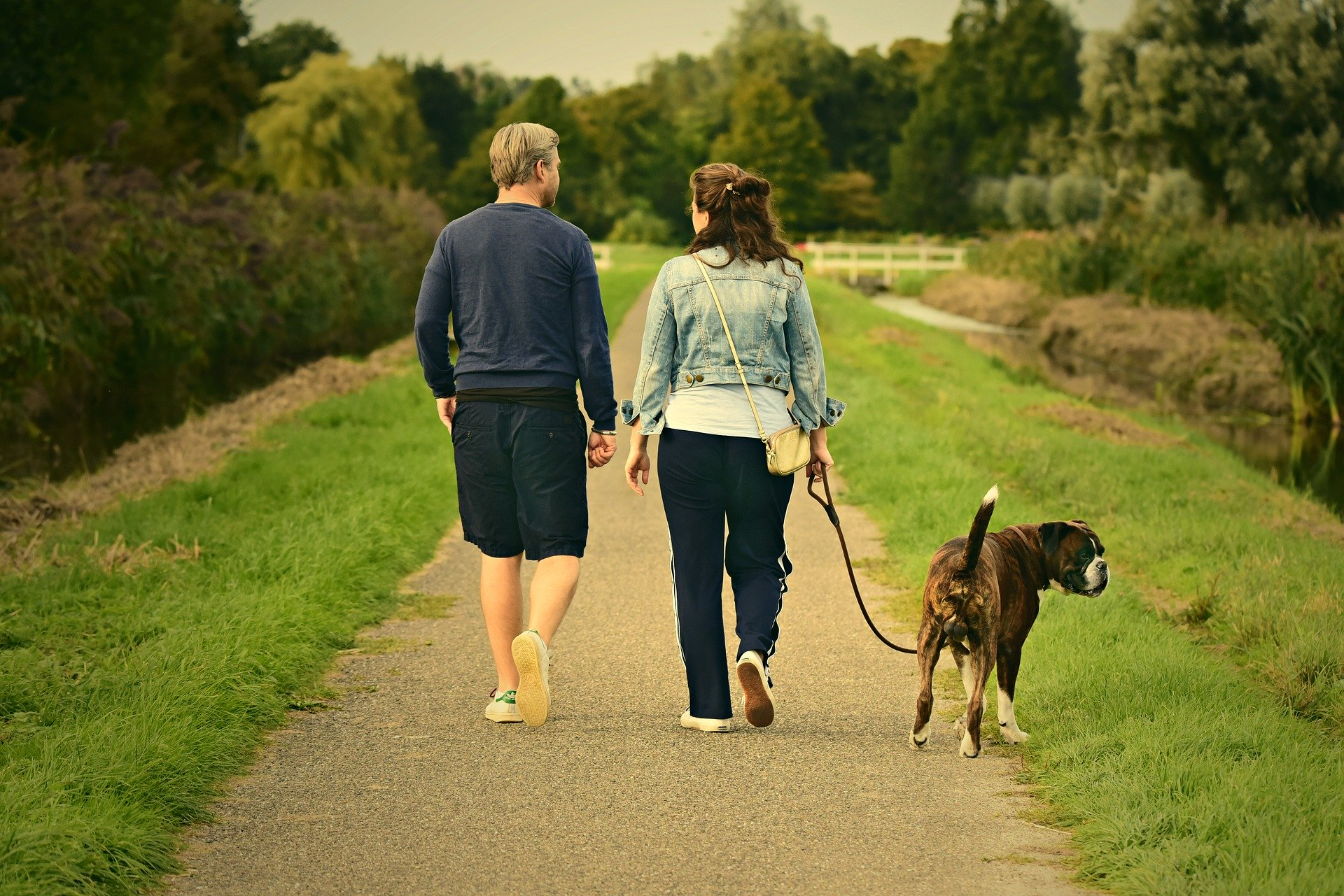 famille qui promène un chien