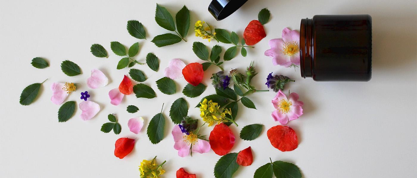 phytothérapie contre l'insuffisance veineuse