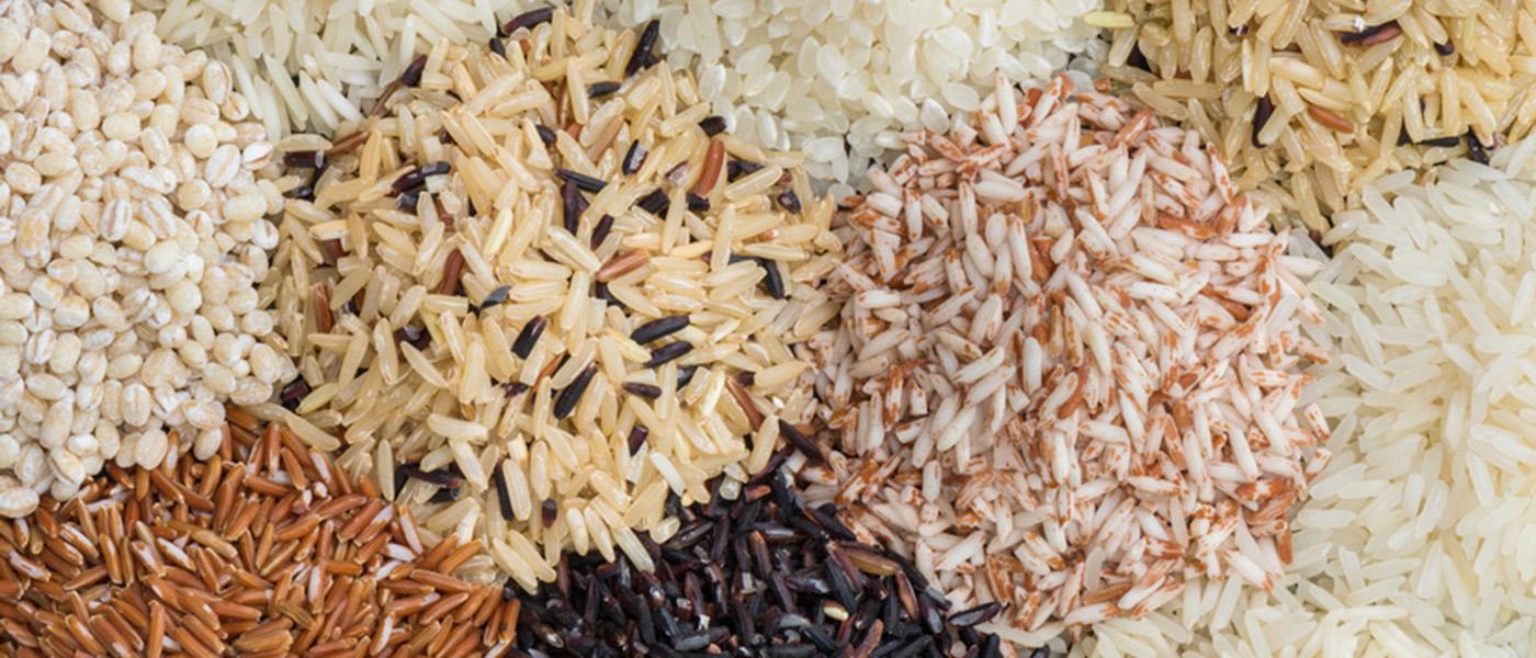 riz pour la gastro