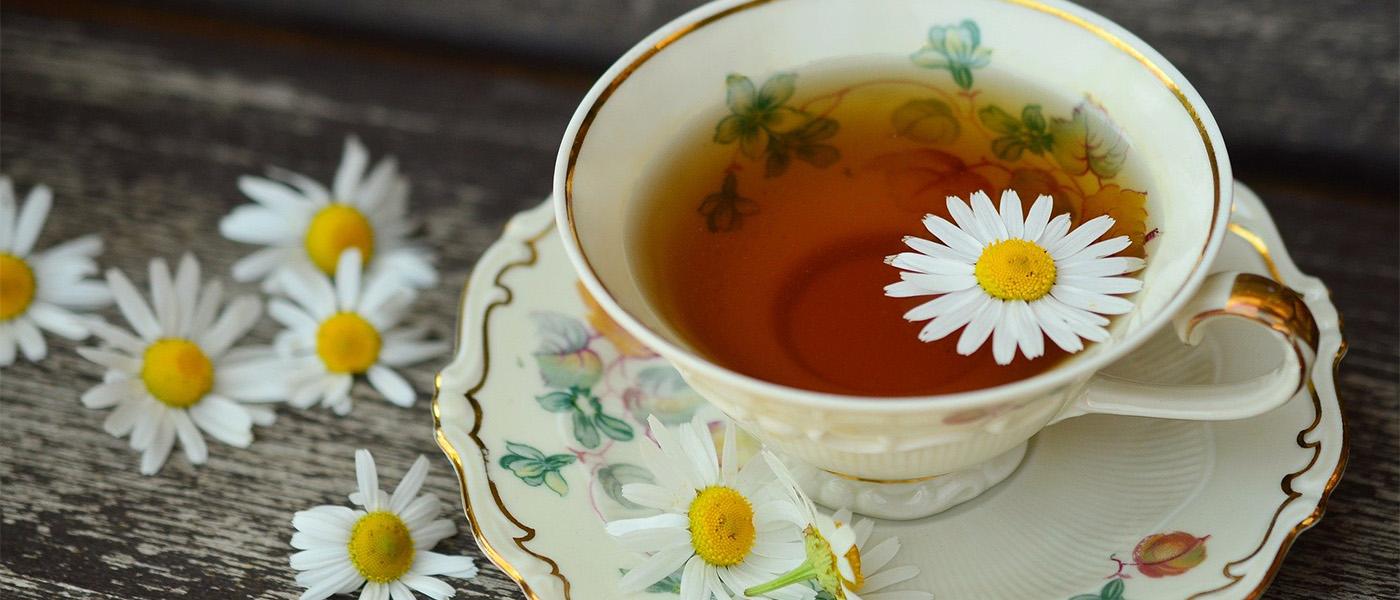 thé vert traitement naturel anti inflammatoire